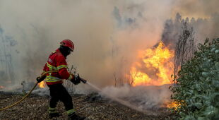 Pożary w Portugalii (PAP/EPA/PAULO NOVAIS)