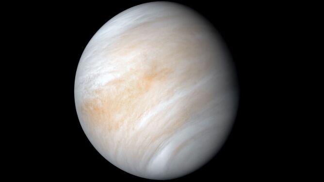 """Fosforowodór w chmurach Wenus. <br />""""Do życia jest jeszcze długa droga"""""""