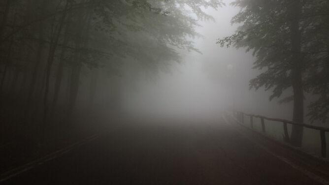 Gęste mgły nad Polską. Obowiązuje prognoza zagrożeń