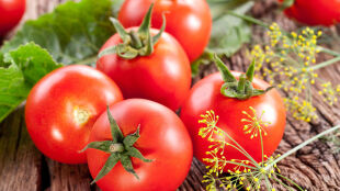 """Addio pomidory, addio utracone"". Synoptykowi już żal lata"