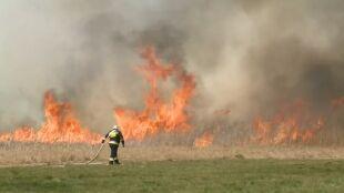 """Pożar w Biebrzańskim Parku Narodowym. """"Płoną bardzo cenne przyrodniczo tereny"""""""