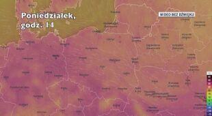 Temperatura powietrza w ciągu kolejnych pięciu dniu (Ventusky.com)